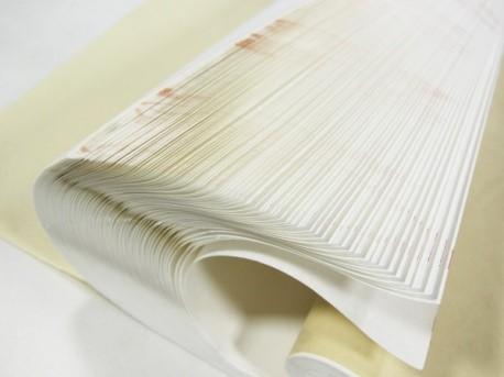 Тонкая даньсюань бумага