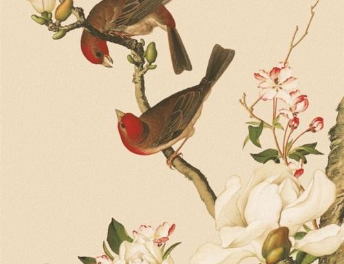 Как художник-иезуит совершил революцию в китайском искусстве