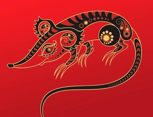 Год Крысы по китайскому календарю. Что говорят легенды